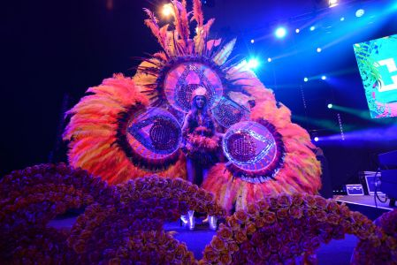Rio carnival feathers dancer