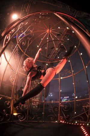aerial girl in cage show