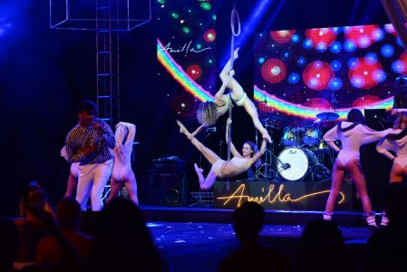 aerial pole act