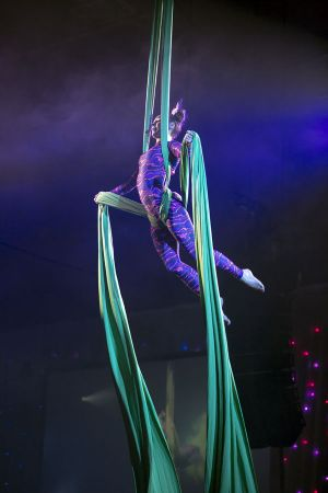 cheshire cat aerial silks show