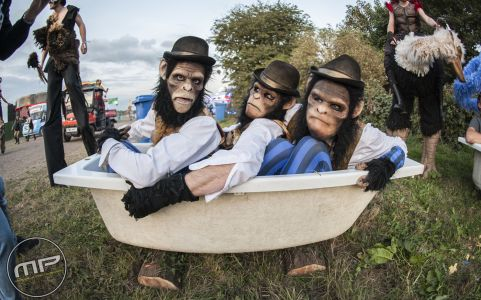 Chimps At Zoo Project