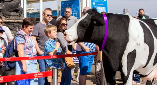 Cadbury Dairy Milk Buttons 'Adopt A Cow' campaign, London, Britain - 13 June 17