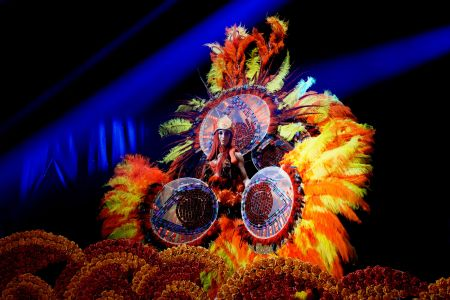 feathers rio dancer