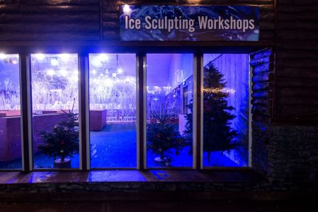 ice sculpting workshops
