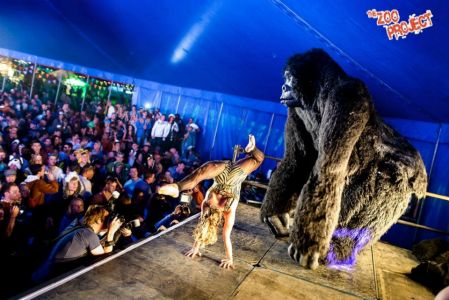 King Kong Zoo Project Festival