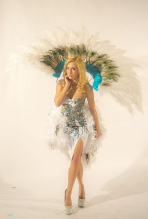 Peacock Feathers Hed Kandi Costume